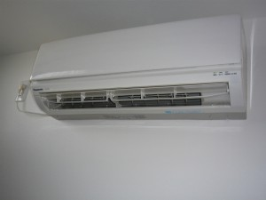 P1020081 (1024x768) (800x600) (800x600)