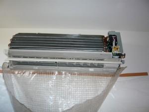 P1020086 (1024x768) (800x600)